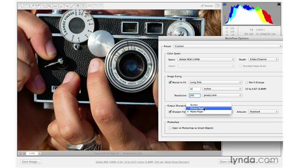 Sharpening and saving from Camera Raw: Photoshop CC for Photographers: Sharpening