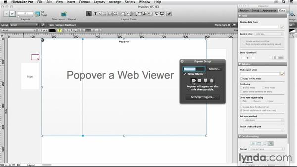 Understanding popover settings: FileMaker 13 New Features