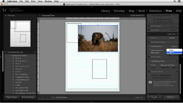 Specialized sharpening for print and screen: Noise Reduction and Sharpening in Lightroom and Photoshop