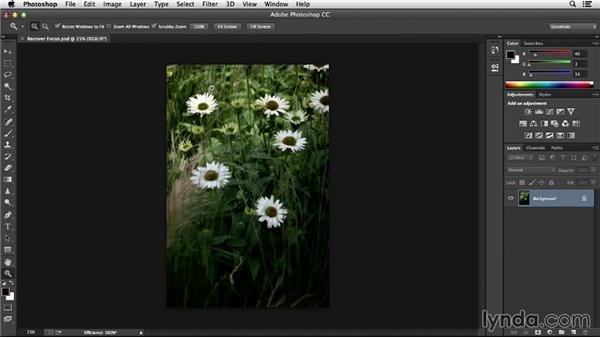 Adobe Camera Raw as a filter: Noise Reduction and Sharpening in Lightroom and Photoshop
