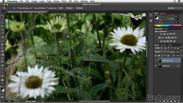Making selective edits with selections, masks, and layers: Noise Reduction and Sharpening in Lightroom and Photoshop