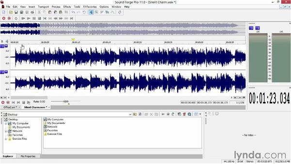 Audio editing basics: Sony Vegas Production Workflow