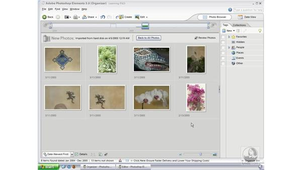Contact Sheets: Photoshop Elements 3 Essential Training