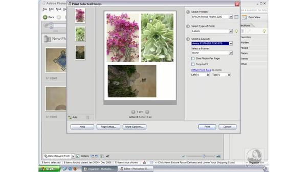 Labels (Win): Photoshop Elements 3 Essential Training