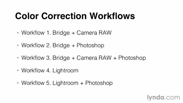 Understanding color workflow tools: Bridge, Photoshop, and Camera Raw: Photoshop Color Correction: Advanced