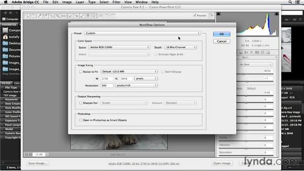 Setting up Camera Raw: Photoshop Color Correction: Advanced