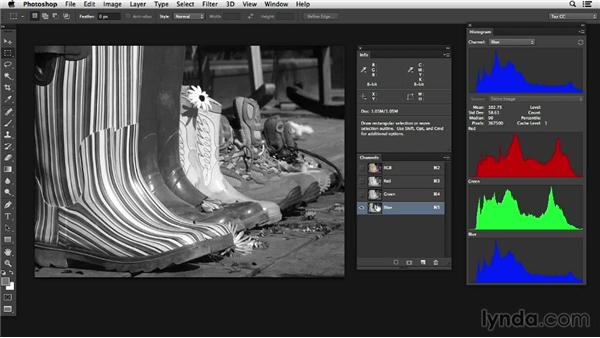 Understanding grayscale values and color: Photoshop Color Correction: Advanced