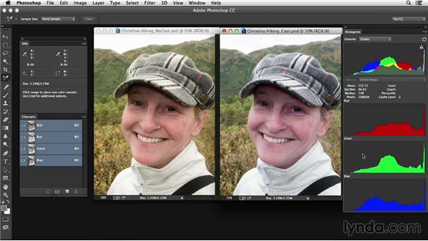 Skin tones and color correction: Photoshop Color Correction: Advanced