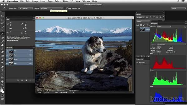 Introducing color tools: Photoshop Color Correction: Advanced