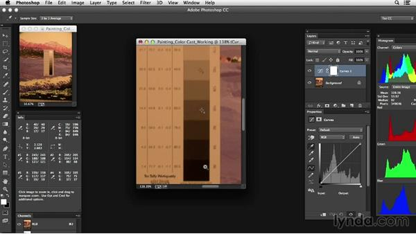 Using targets for color correction: Photoshop Color Correction: Advanced