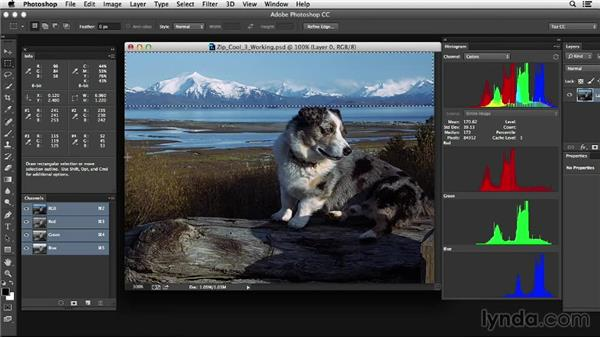 Using selection tools for image evaluation: Photoshop Color Correction: Advanced