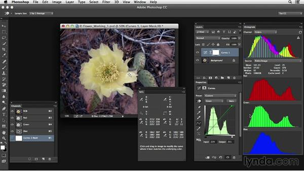 Working with near neutrals and images with no neutrals: Photoshop Color Correction: Advanced