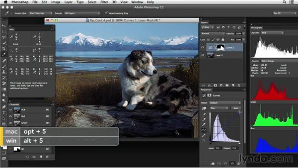 Making adjustments for complex color casts: Photoshop Color Correction: Advanced