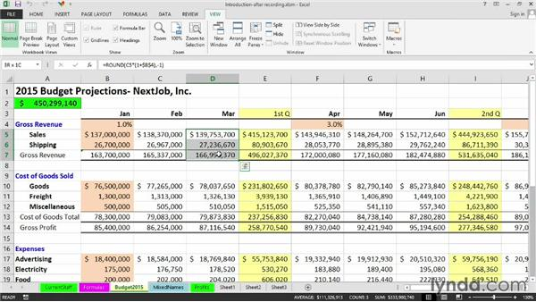 Overview of other techniques: Excel 2013: Macros in Depth