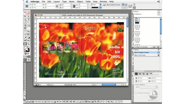 Document Window: InDesign CS2 Essential Training