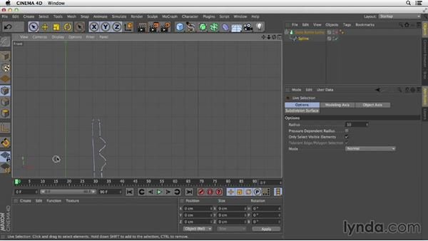 Creating partial outlines: Primitive and Spline Modeling in CINEMA 4D