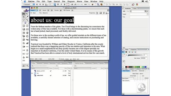 Text Size: GoLive CS2 Essential Training