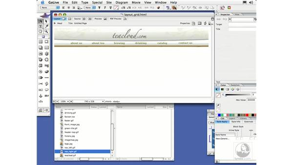 Layout Grid Layout: GoLive CS2 Essential Training