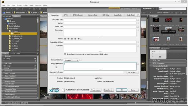Adding copyright and metadata: Introducing Photoshop: Photography