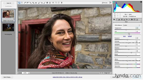 Adjusting Temperature and Tint: Introducing Photoshop: Photography