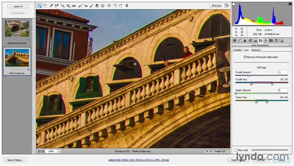 Lens correction and chromatic aberrations: Introducing Photoshop: Photography