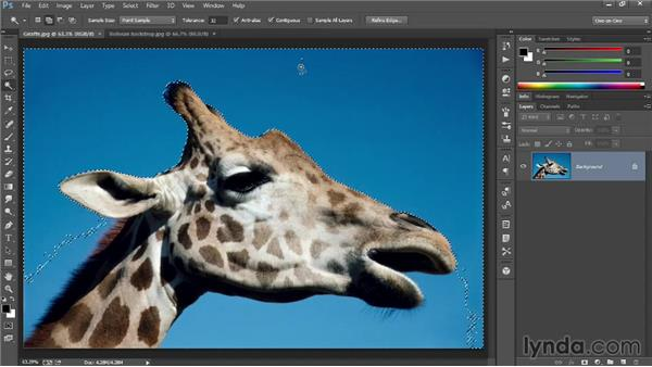 Selecting portions of an image: Introducing Photoshop: Photography