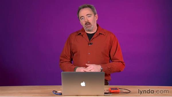 What you should know before watching this course: After Effects Guru: Working with Vectors