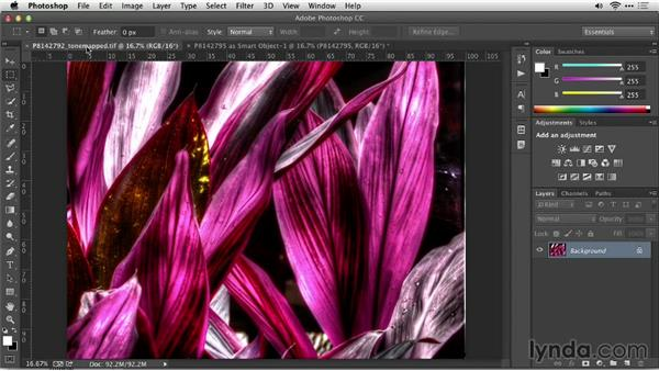 Challenge: Creating the look of a digital painting : Up and Running with Photomatix Pro