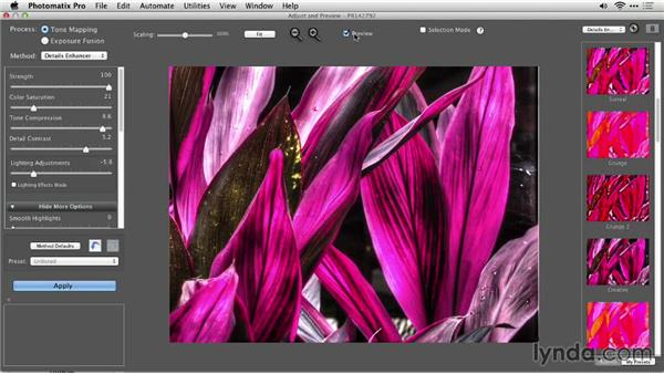 Solution: Creating the look of a digital painting : Up and Running with Photomatix Pro