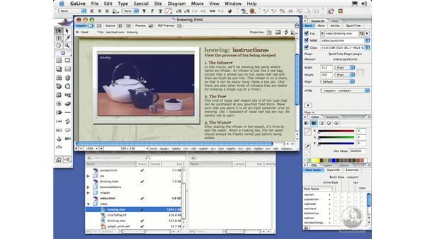 Adding a QuickTime Movie: GoLive CS2 Essential Training