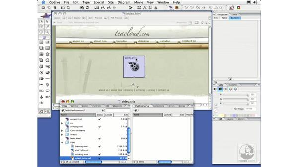 Adding a SWF File: GoLive CS2 Essential Training