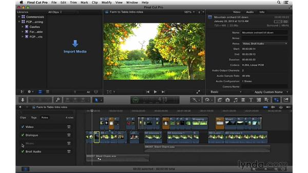 Exporting stems out of the timeline using roles: Final Cut Pro X 10.1.x Essential Training