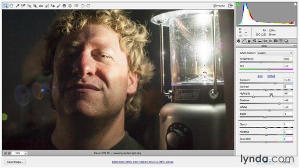294 Mastering Exposure in Camera Raw: Deke's Techniques