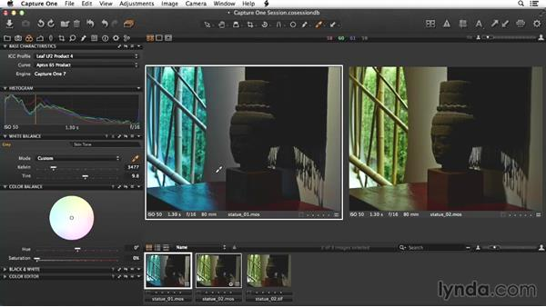 Processing the second statue image: Enhancing Interior Architectural Photos