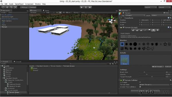 Painting grass, shrubs, and 3D geometry: Unity 4.3 Essential Training