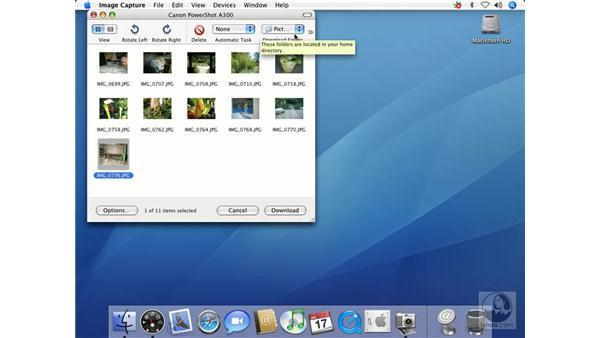 Using Image Capture: Mac OS X 10.4 Tiger Essential Training