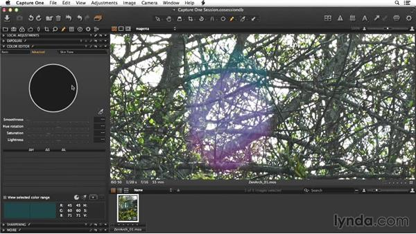 Raw conversion of the arches image in Capture One: Enhancing Exterior Architectural Photos