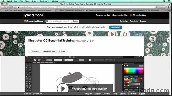 Next steps: UX Design Tools: Illustrator