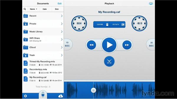 Recording voice memos and meetings: iPad for Business