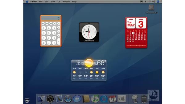 Using the Dashboard: Mac OS X 10.4 Tiger Essential Training