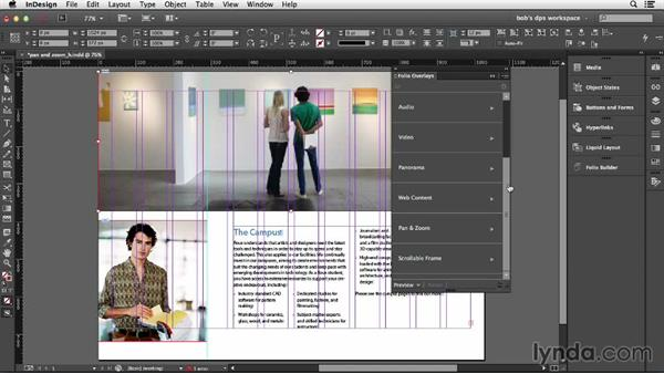 Working with Pan & Zoom: Adobe Digital Publishing Suite Essential Training