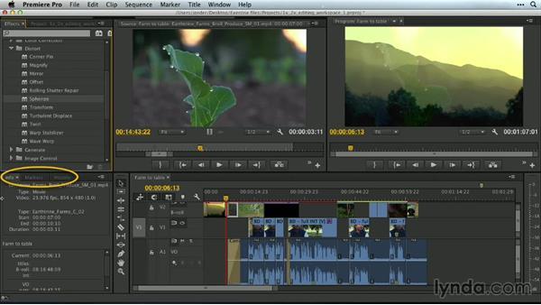 Effects: Premiere Pro Guru: Customizing Workspaces