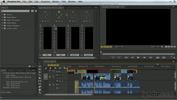 Audio: Premiere Pro Guru: Customizing Workspaces