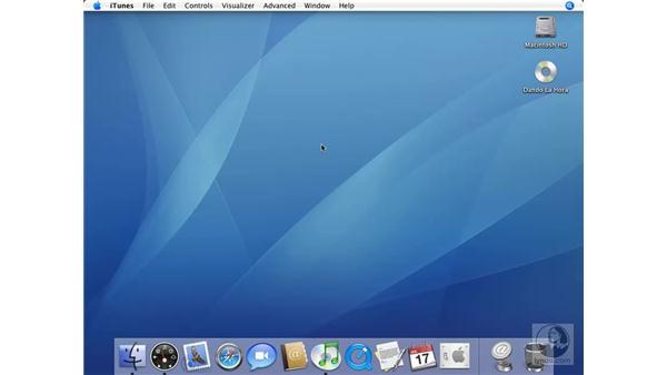 iTunes Widget Revisited: Mac OS X 10.4 Tiger Essential Training