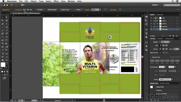Image considerations: Package Design with Illustrator