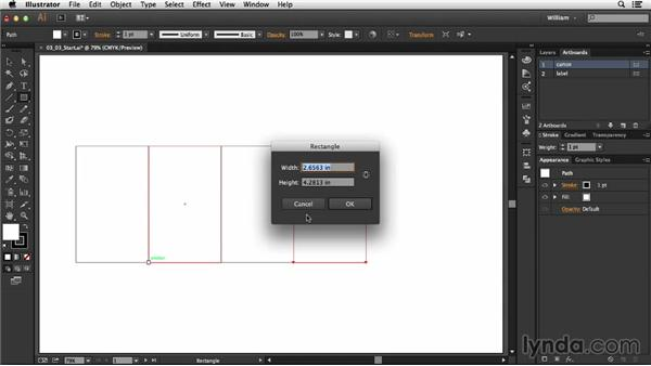 Creating box panels: Package Design with Illustrator