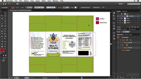 Adding color chips: Package Design with Illustrator