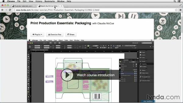 Next steps: Package Design with Illustrator