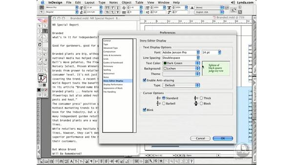 Story Editor: InDesign CS2 Essential Training