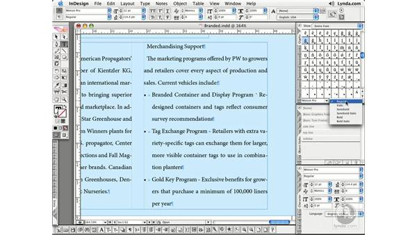 Specialty Characters and Glyphs: InDesign CS2 Essential Training
